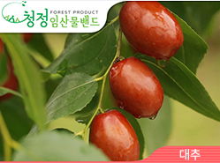 [청정임산물] 대추나무 사랑방